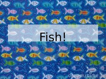 All about Fish! Animal Classification