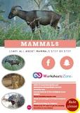 All about Mammals-ANIMAL CHARACTERISTICS Fact Packs (Mammals)_ Animal Unit