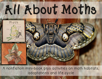 All about Moths Minibook including habitats, life cycle and adaptations