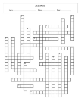 All about Plant Processes Crossword with key
