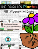 All about Plants in Spanish