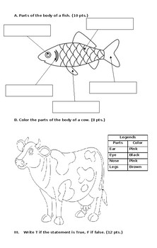 All about animals Quiz