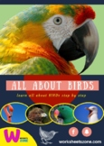 All about birds Unit: Life Cycle, Facts,Interactive Notebo