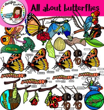 All about butterflies clip art