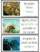 All about fish - todo sober el pez (montessori)