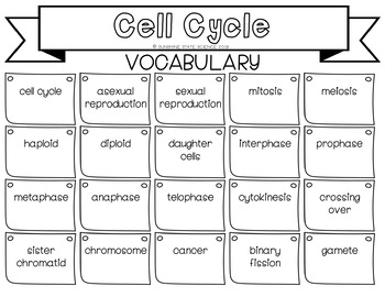 Cell Cycle & Mitosis: Goals & Scales, Essential Questions & Vocabulary