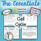 Cell Cycle (Mitosis & Meiosis): Goals & Scales, Essential Questions & Vocabulary