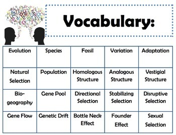 Evolution and Classification: Goals & Scales, Essential Questions & Vocab