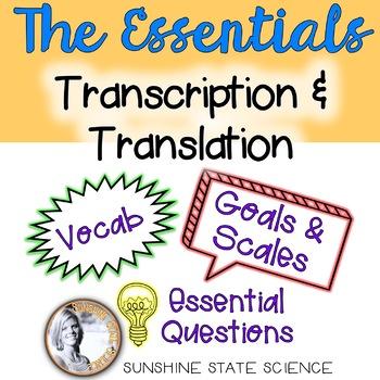 Transcription & Translation: Goals & Scale, Essential Questions & Vocab