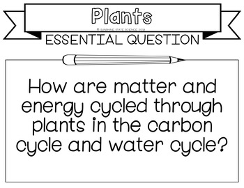 Plants, Photosynthesis & Cellular Resp: Learning Goal, Scale, Essential Question