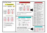 All past tenses in SPANISH template