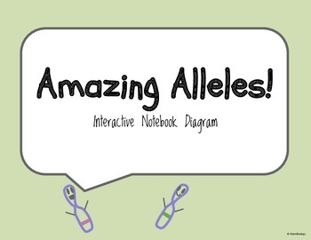 Allele Interactive Notebook Diagram
