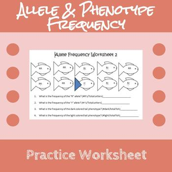 Allele & Phenotype Frequency Practice Worksheet