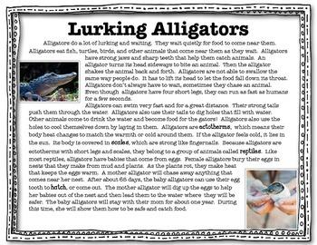 Alligator Close Read