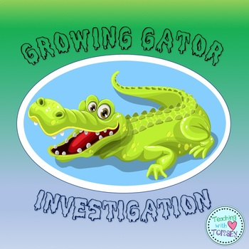 Alligator Investigation