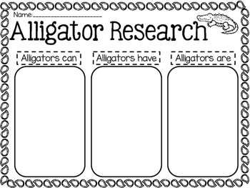 Alligator Research