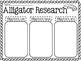Alligator Research