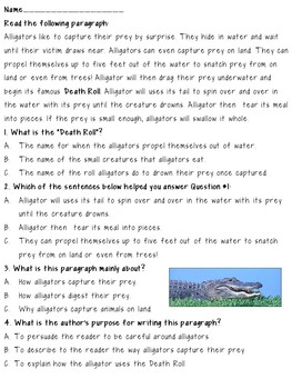 Bellringers & Reading Activities for Middle School Students~Alligators
