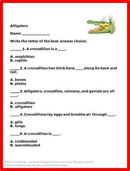 Alligators Animals of the World