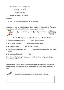 Alliteration and Homophones Packet