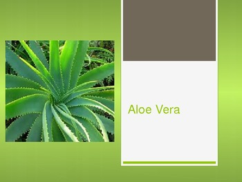 Aloe Vera Powerpoint - basic information