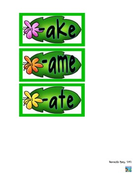 Aloha Word Sort  for  -ake, -ame, -ate.