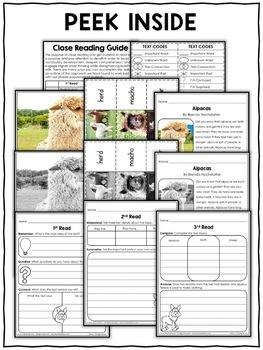 Alpaca Close Reading Passage Activities
