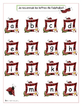 Alphabet et coccinelles (Letter Recognition & Identification activities)