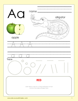 Alphabet Activity Worksheet