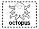 Alphabet Anchor Chart Pieces - Letter O - Blackline