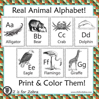 Alphabet Animal Coloring Book or posters!