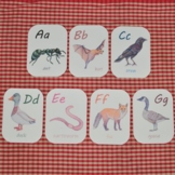 Alphabet Animal Flashcards: printable ABCs cards with Nort