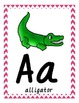 Alphabet Animal Posters-Dnealian Font Colorful Chevron Background