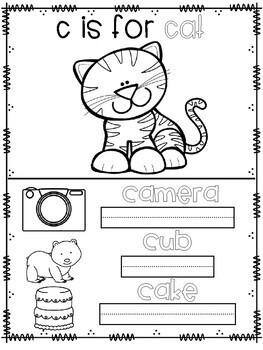 ABC Animals and More Coloring and Activity Book