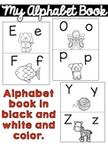 Response to Intervention Alphabet Book