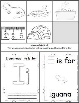 Alphabet Book- Letter I