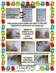 Alphabet Books ~Fill In Readers~  PLUS Word & Picture Card