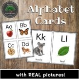 Alphabet Cards - Real Pictures, Flashcards, Literacy Center
