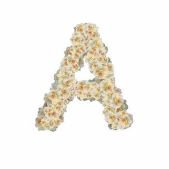 Alphabet Clip Art White Roses