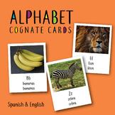 Alphabet Cognate Cards English and Spanish ESL