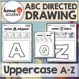 Alphabet Directed Drawings