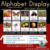 "Alphabet Display -Manuscript-  With Photographs- Small Size 5""x7"""