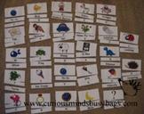 Alphabet Flash Cards - 3 ways to use
