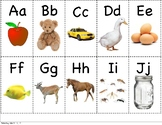 Alphabet Flash Cards and Mini Alphabet Wall for ELL Virtua
