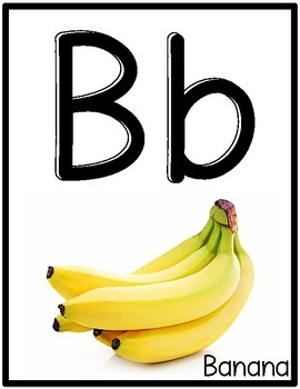 Alphabet Letter Posters with REAL photos (Beginning Sounds)