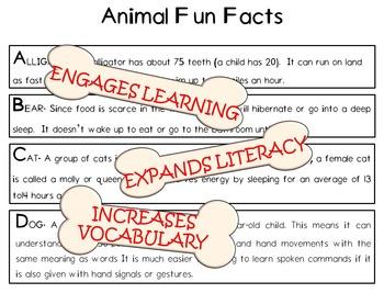Child's Choice Writing Practice: ABC  ANIMAL - Intermediate