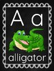 Alphabet Letters Pictures Words on Chalkboard Background