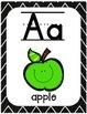 Alphabet Line-A Pop of Color