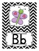 Alphabet Line Display Cards - Black and White Chevron