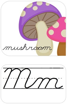 Alphabet Line Traditional Cursive: White, Bright and Modern!